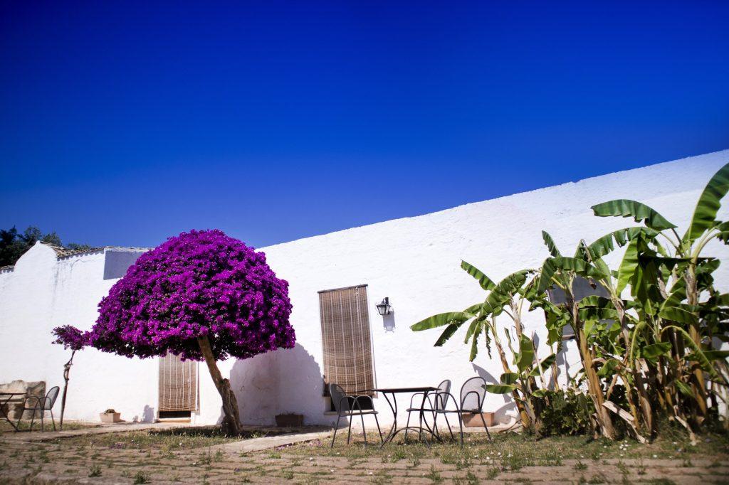 Particular architectural Masseria